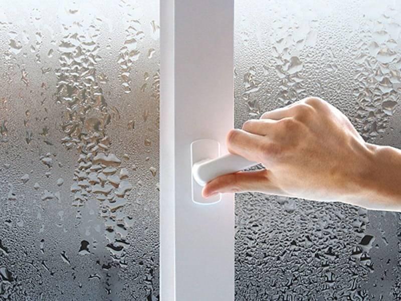Как убрать плесень на пластиковых окнах и откосах?