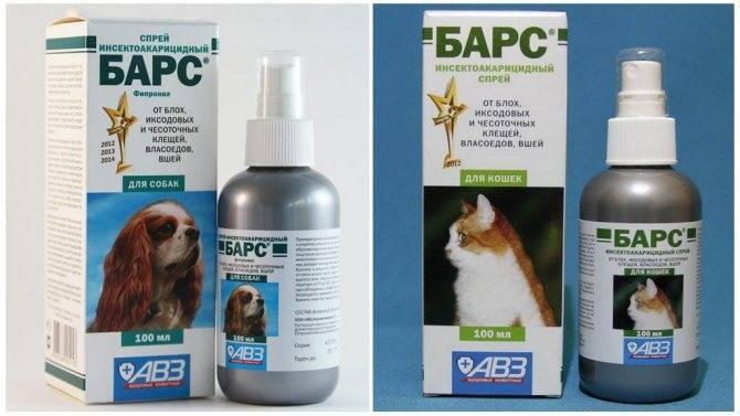 Применение капель от блох барс для кошек