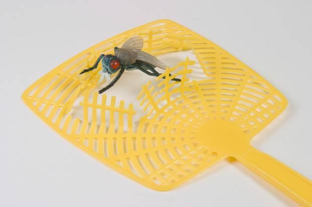 Как избавиться от мух на даче народными средствами