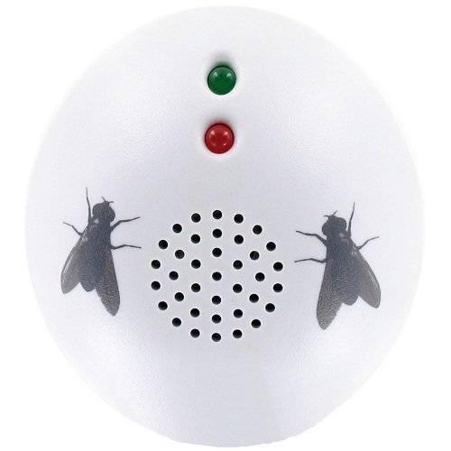 Помогает ли ультразвук от тараканов