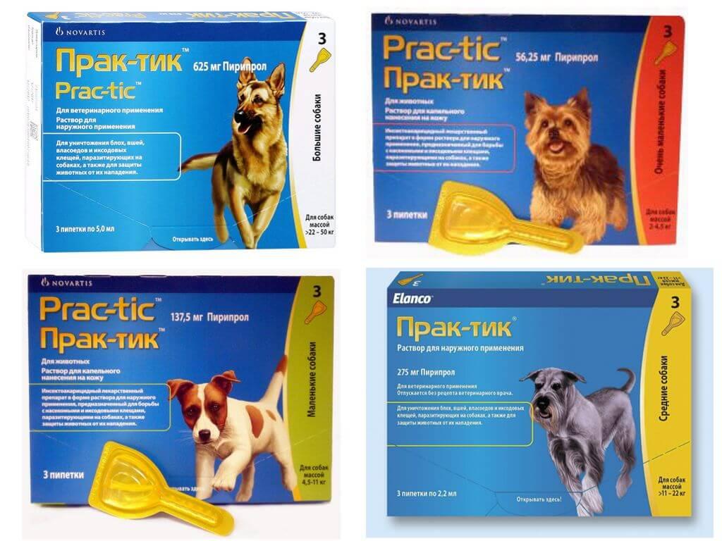 Капли практик от клещей для собак