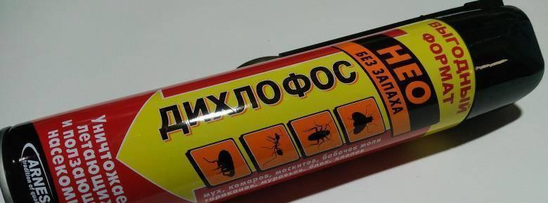 Дихлофос от тараканов — эффективность, правила использования и отзывы покупателей