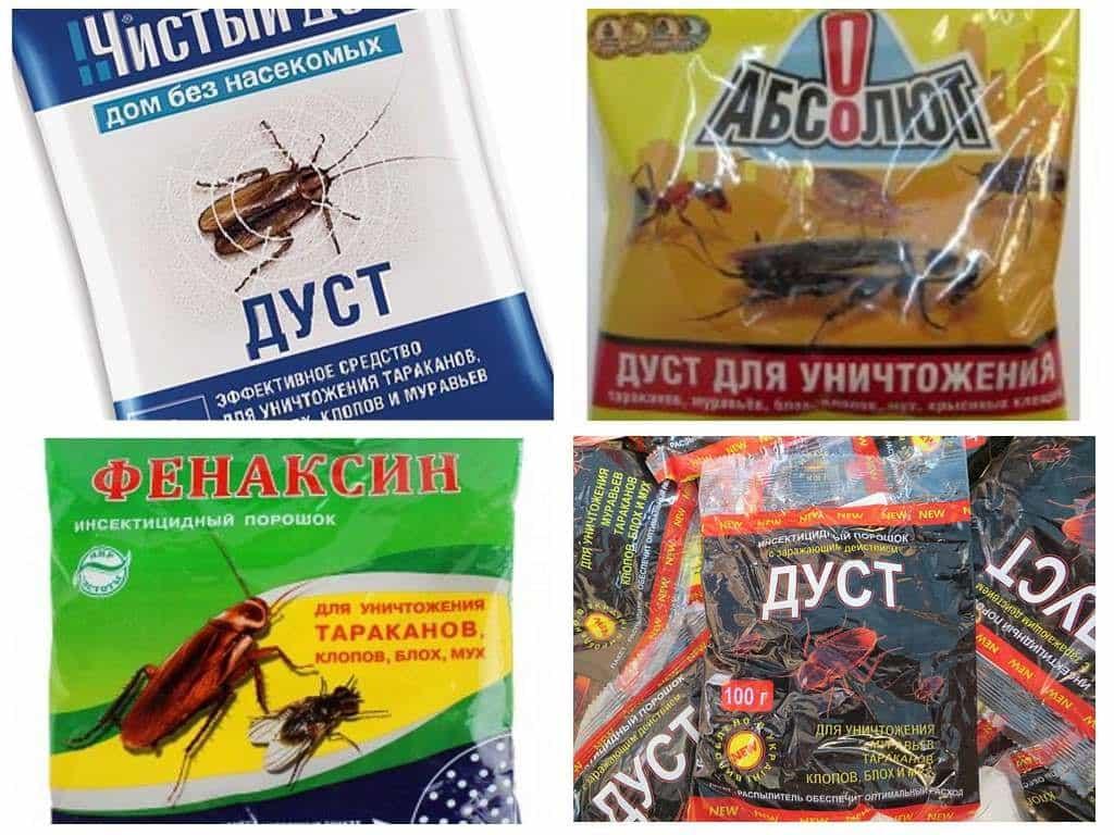 Особенности применения дуста от тараканов