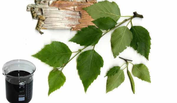 Как избавиться от тли на деревьях и кустарниках на садовом участке
