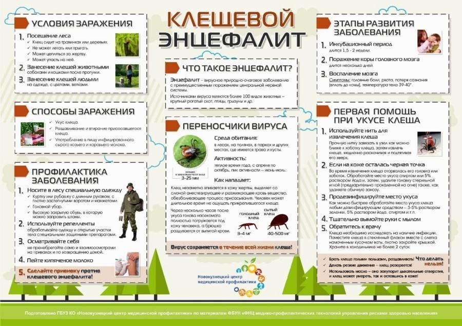 Приказы по педикулезу в казахстане