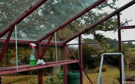 Обработка теплицы из поликарбоната осенью