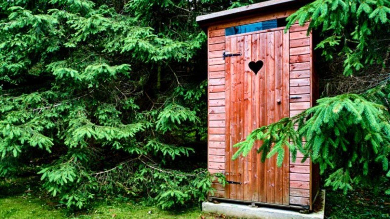 Как бороться с мухами в частном доме