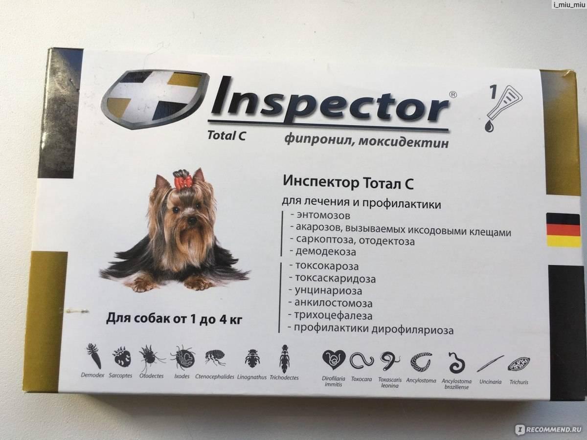Капли инспектор для собак: показания к применению