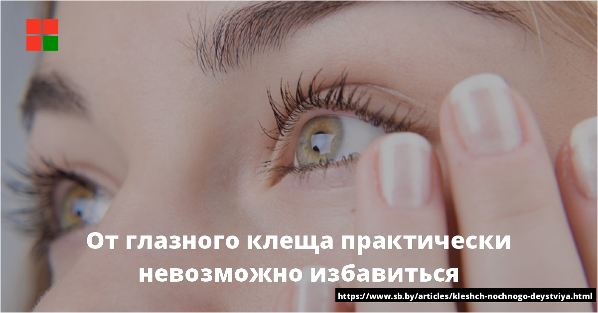 Глазной клещ у человека. симптомы и лечение демодекоза век