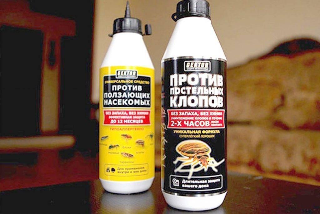 Комбат от клопов: как справляется качественный инсектицид с паразитами