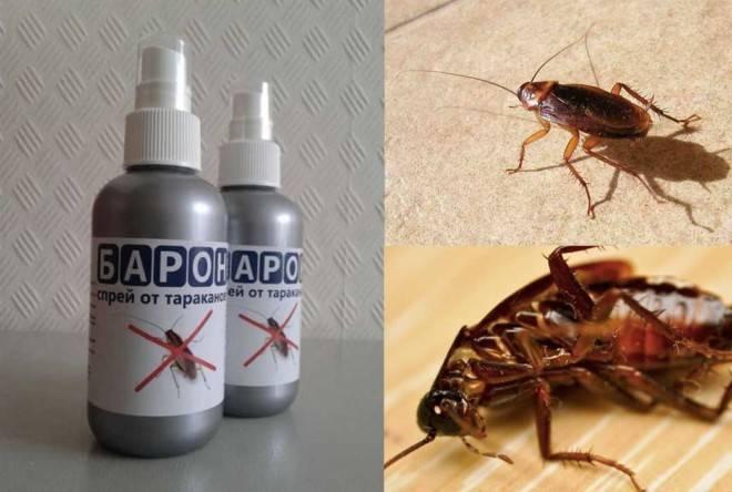 Средство от тараканов барон спрей отзывы с оценкой «отлично»