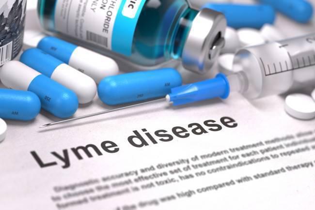 Клещевой боррелиоз — симптомы, стадии, лечение и последствия заболевания