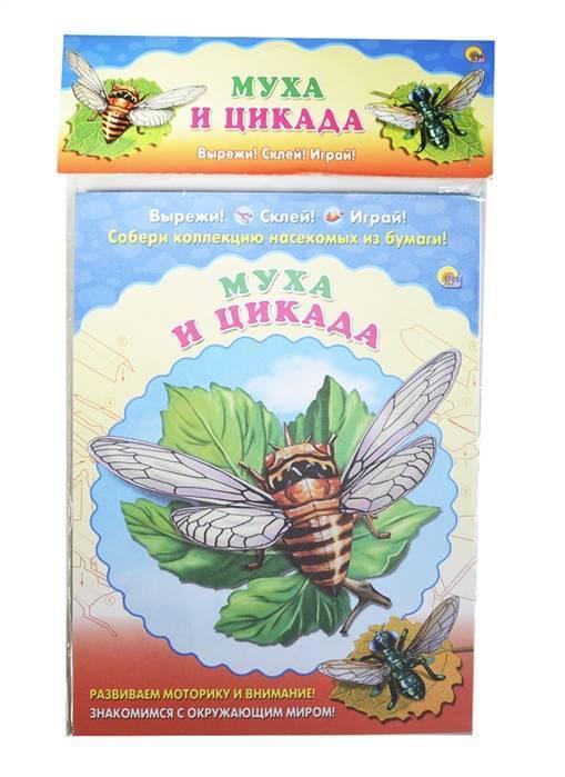 Отличия сверчка и цикады