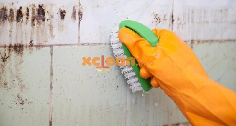 Чем отмыть швы между плиткой в ванной
