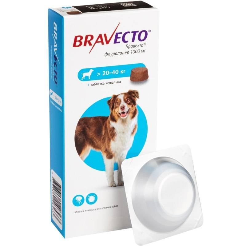 Лучшие таблетки от блох для кошек и собак