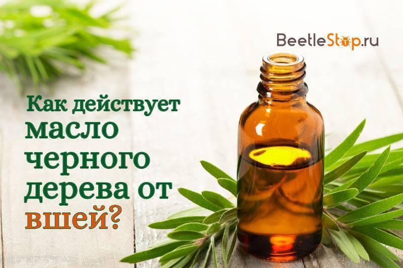 Масло чайного дерева от вшей и гнид – как применять для лечения педикулеза