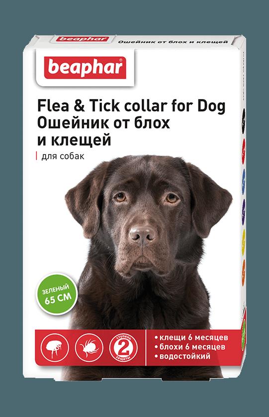 Ошейники от блох и клещей для щенков и взрослых собак