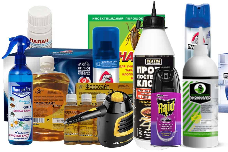 Эффективные средства от клопов без запаха в квартире