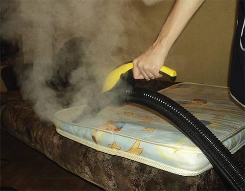 При какой температуре умирают домашние клопы?