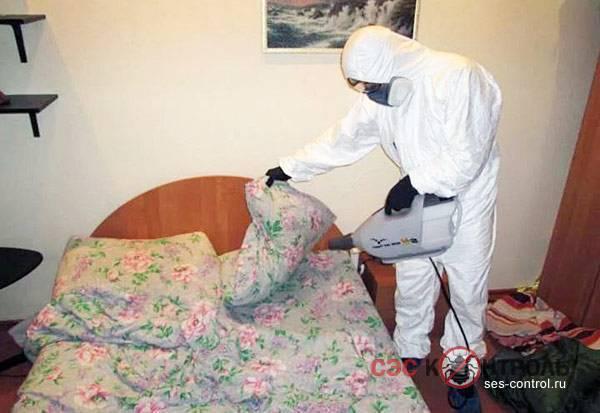 Как делать дезинфекцию от клопов в квартире