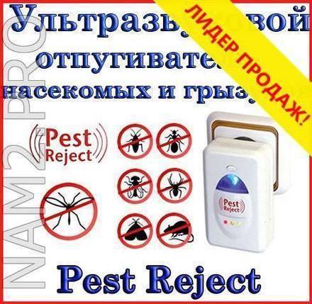 Ультразвуковой отпугиватель грызунов и насекомых пест реджект: особенности, отзывы