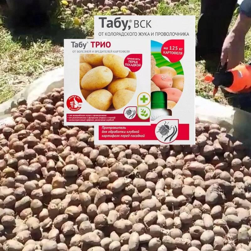 Применение препарата «престиж» для обработки картофеля