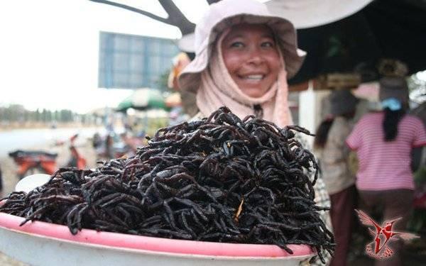 Какое насекомое самое вкусное?