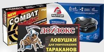 Ловушки для тараканов — обзор лучшего на рынке