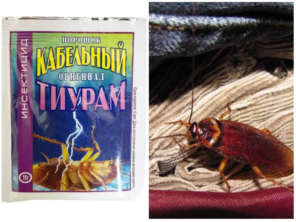 Эффективен ли тиурам от тараканов, и как им пользоваться?