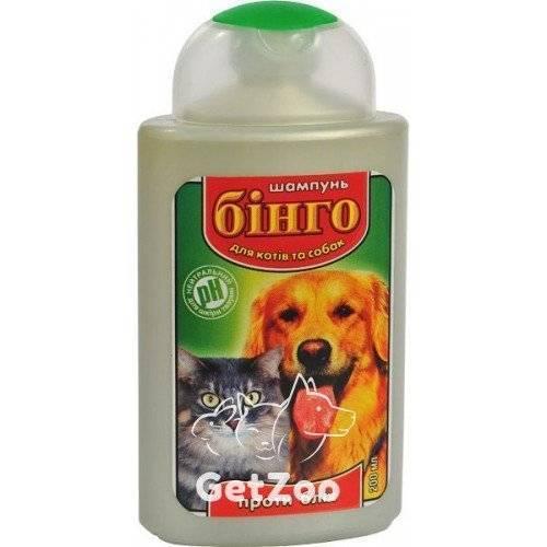 Как выбрать лучший шампунь против блох для кошек?