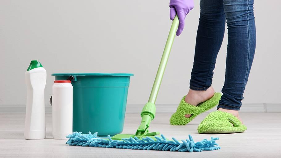 Инструкция: как вывести блох в своём доме