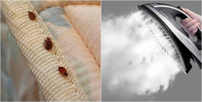 Какие средства комбат помогут в борьбе с постельными клопами