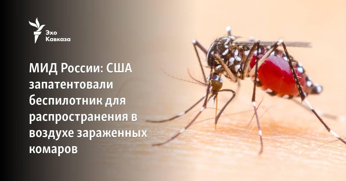 Есть ли малярийные комары в турции