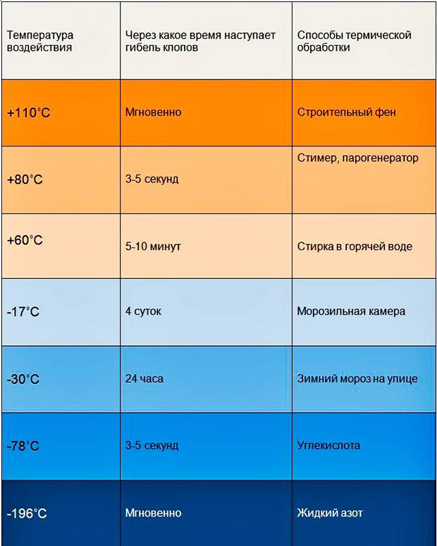 При какой температуре погибают клопы и их яйца?
