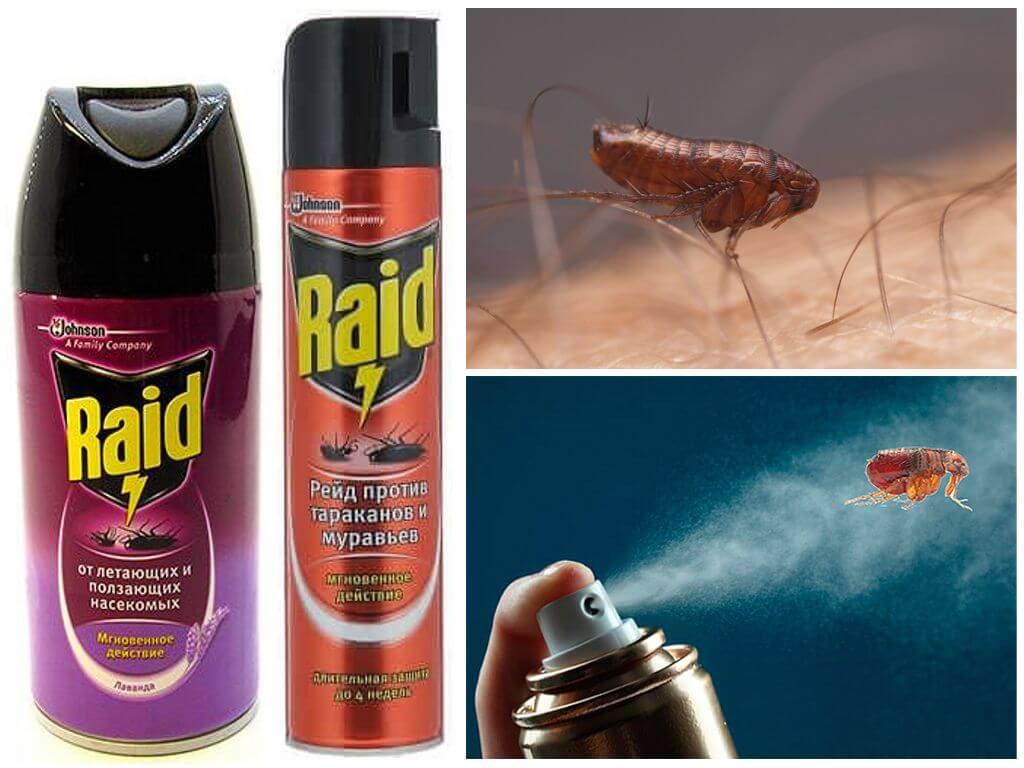 """""""рейд"""" от тараканов – высокое качество по оптимальной цене"""
