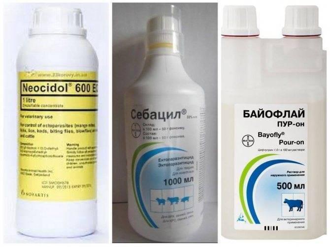Бутокс 50: инструкция по применению препарата в ампулах