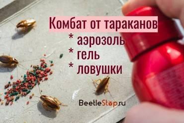 Топ-6 лучших спреев и аэрозолей от тараканов