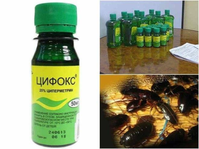 Цифокс от вредителей и паразитов – результат налицо