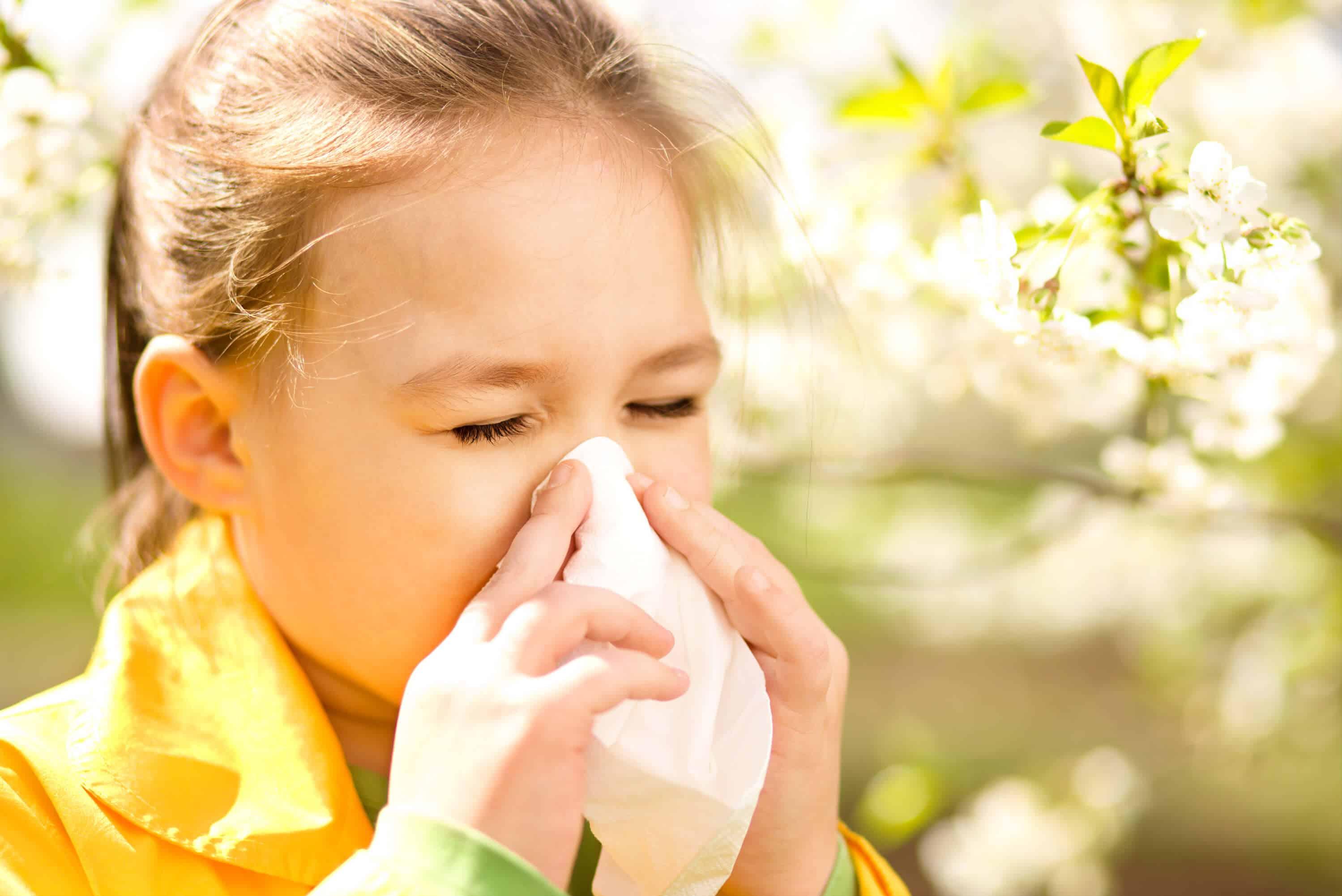 Аллергия на клещей домашней пыли: причины, симптомы и что делать