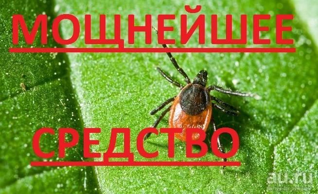 Инсектицид таран