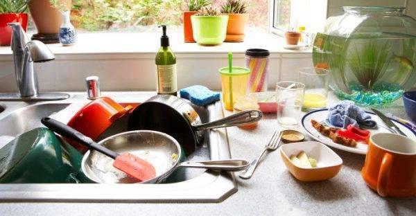 Муравьи в доме – почему появляются и как избавиться от них раз и навсегда