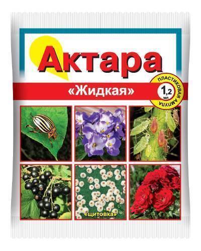 Инсектицид актара: инструкция по применению препарата для обработки плодовых и комнатных растений