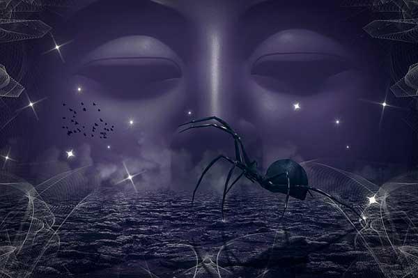 Паутина – все приметы, связанные с паучьей сетью