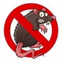 Средства для борьбы с грызунами: препараты, отпугиватели и ловушки — выбираем лучшее!