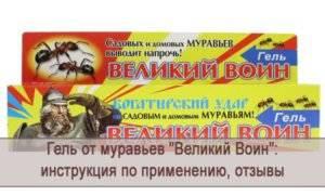 Лямбда зона от тараканов: инструкция по применению (отзывы)