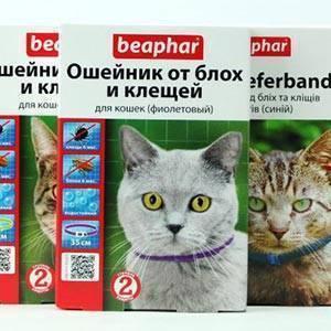 Ошейник от блох и клещей для кошек — отзывы про применение