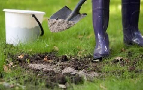 Как правильно приготовить и применить мыльно-зольный раствор от вредителей на огороде