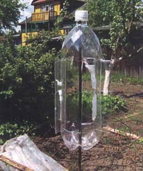 Как сделать отпугиватель от кротов из пластиковой бутылки?