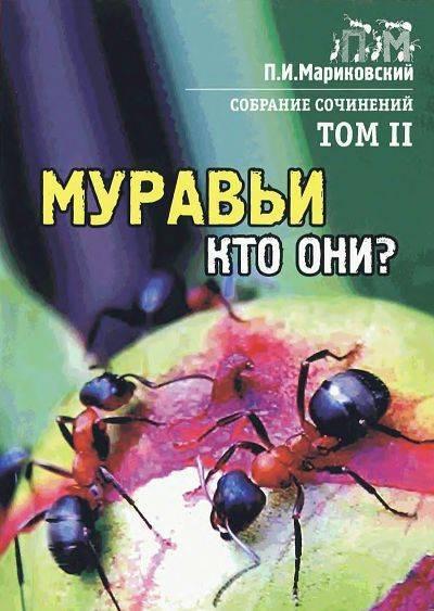 Укус непонятного насекомого