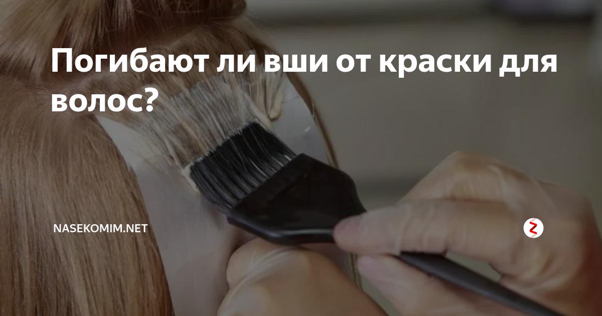 Убивает ли краска для волос вшей и гнид?